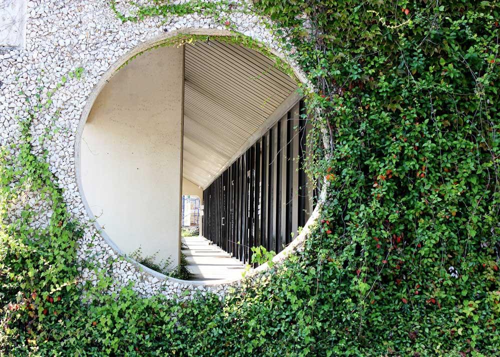 Zöld folyosó